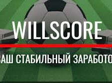 willscore программа